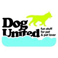 บริการสระว่ายน้ำสำหรับสุนัข โรงแรมสุนัข สนามวิ่งเล่น และคาเฟ่สำหรับเจ้าของสุนัข
