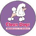 Clean Dogs Boutique Salon บริการอาบน้ำ-ตัดขน-ฝากเลี้ยง - 087-907-8467