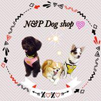 เสื้อผ้าสุนัข สัตว์เลี้ยง N&P Dog shop