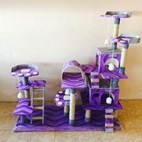 ร้านขายของเล่นแมว คอนโดแมว Toyscat by Coffee