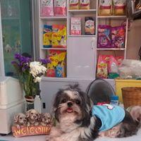 ฐานเพชรอาหารสัตว์ by pet town โทร 085 930 0124