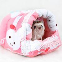 Maru Pet Shop จำหน่ายอุปกรณ์เลี้ยงเม่นแคระ ชูการ์ แฮมสเตอร์ และ อื่นๆ 0896985511