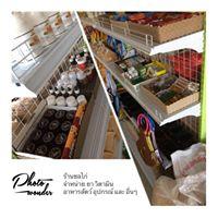 ร้านชลไก่ จำหน่าย ยา วิตามิน อาหารสัตว์ อุปกรณ์ และ อื่นๆ โทร 099-929-7899